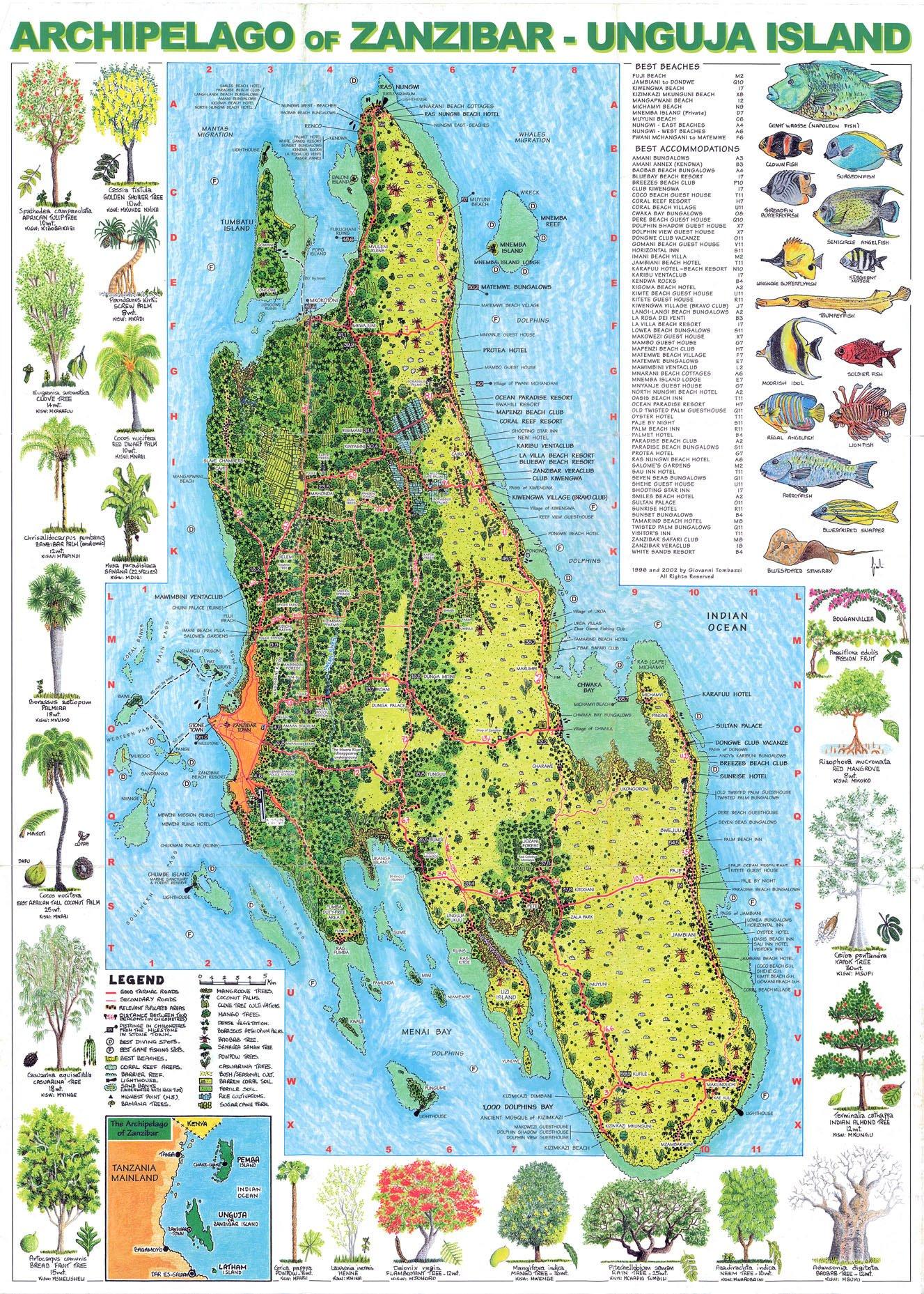 Artist's Map of Zanzibar's Unguja Island