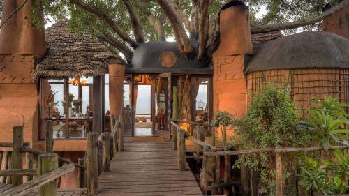 Crater Lodge - Tree Lodge