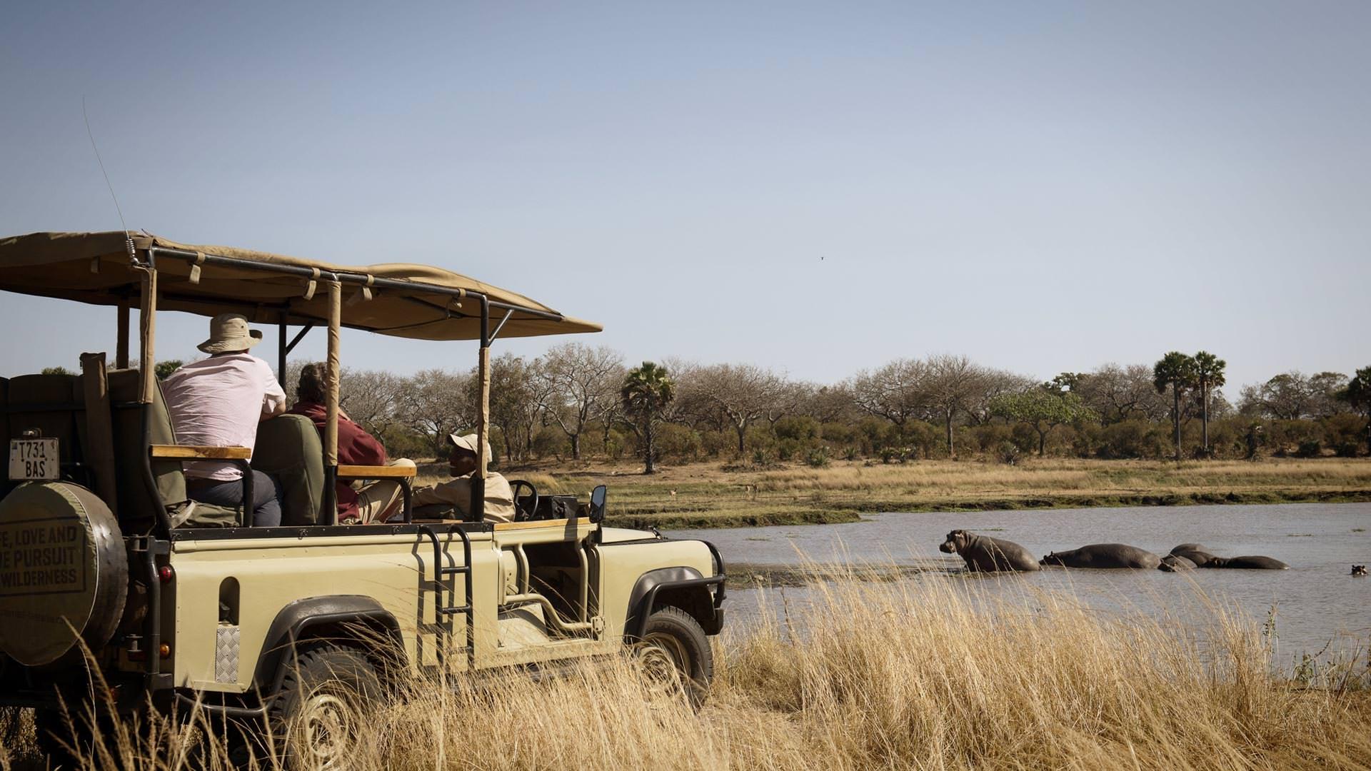 Remote Safaris in Katavi