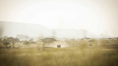 Safari vehicle approaching