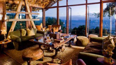 Tree Lodge lounge
