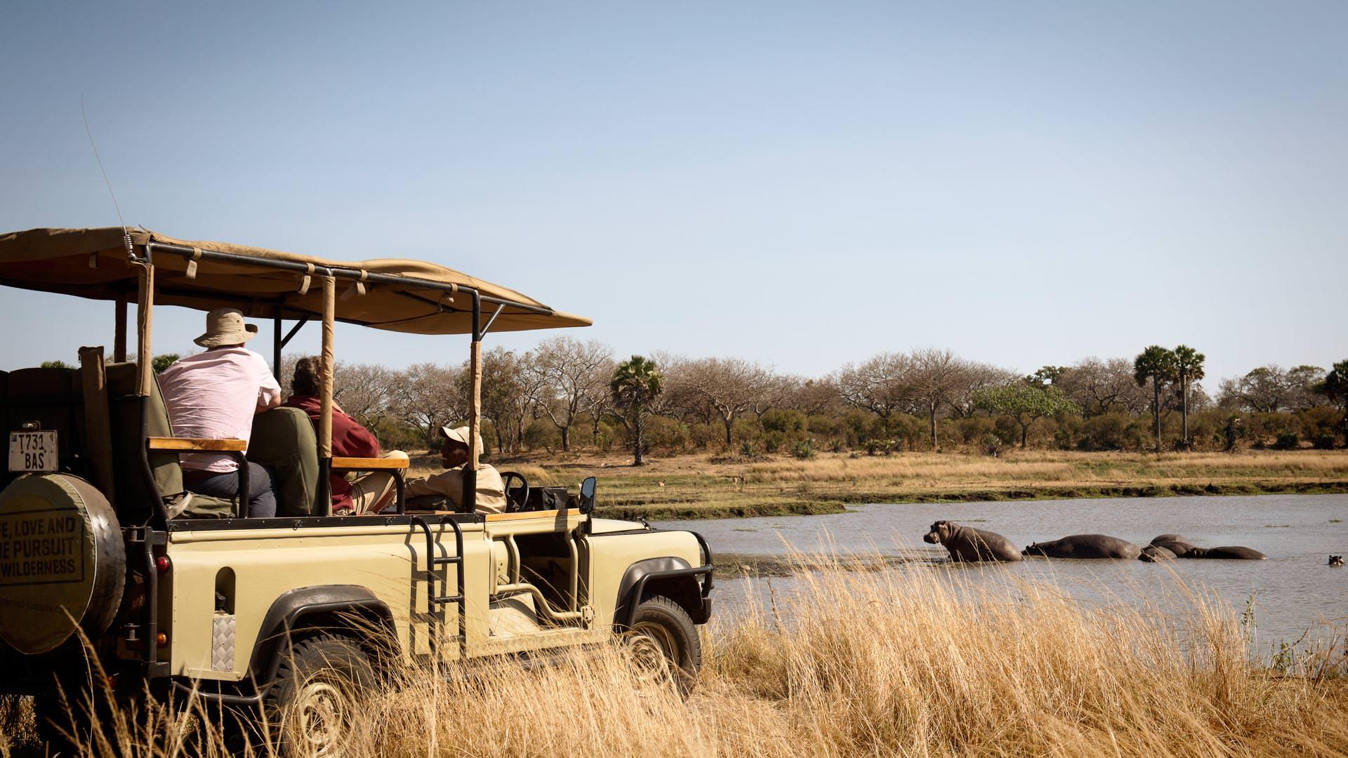 Remote Safaris