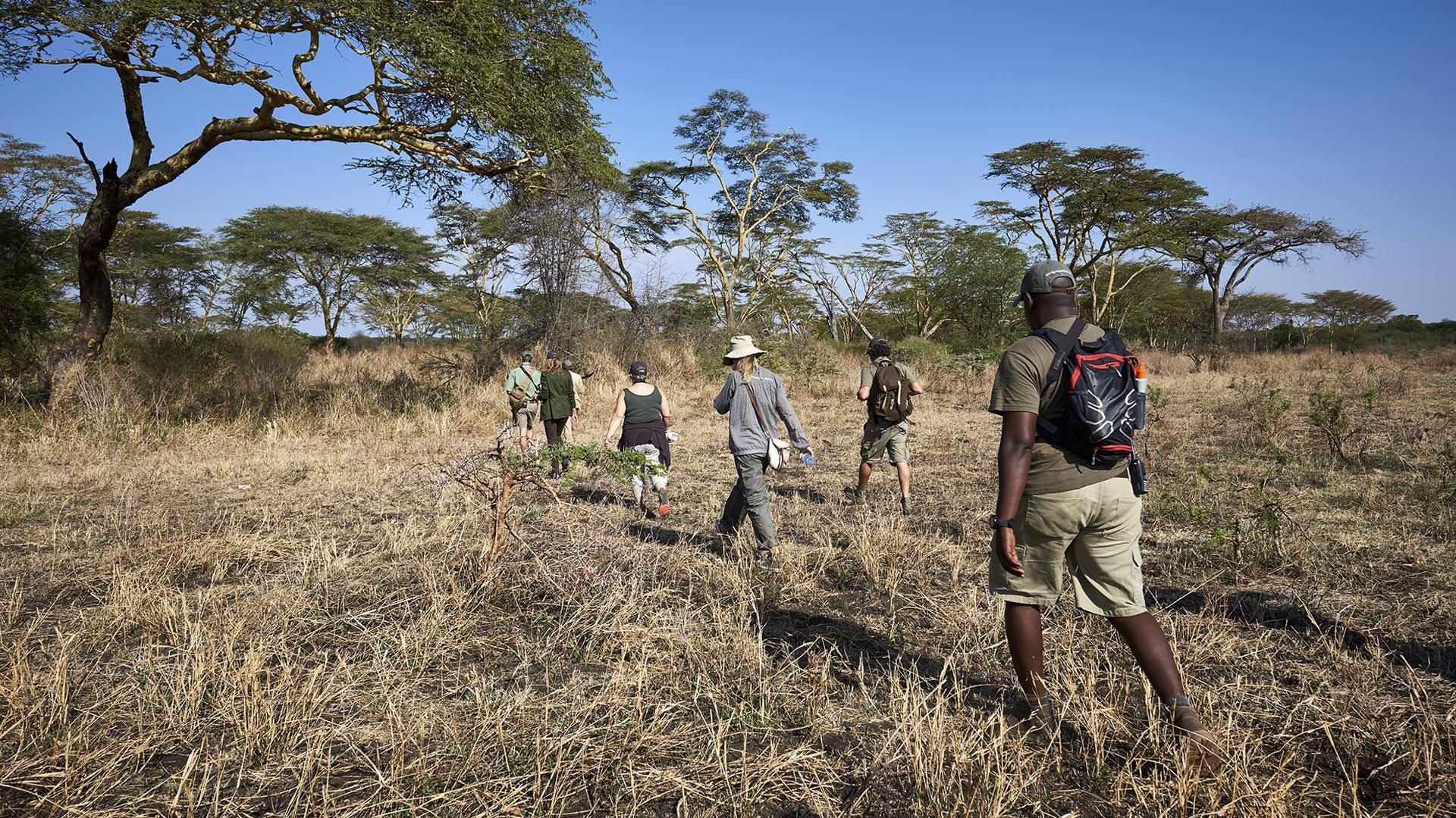 Walking in Maswa Game Reserve