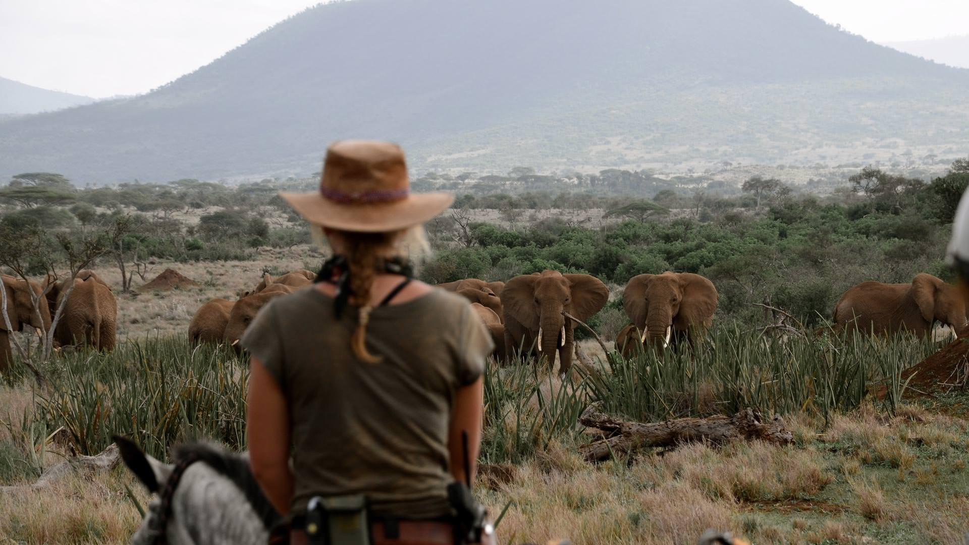 Approaching elephants on horseback at Ndarakwai Ranch