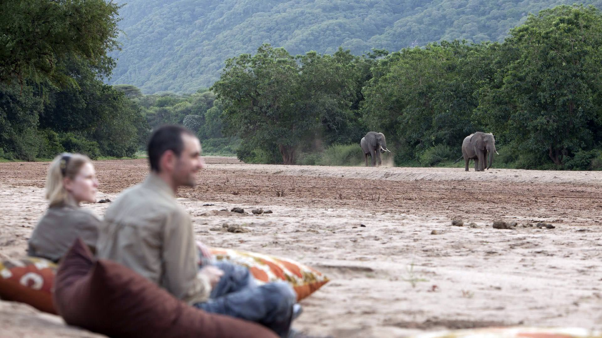 Watching elephants from Manyara Green Camp