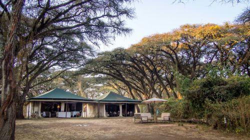 Sanctuary Ngorongoro Common Area