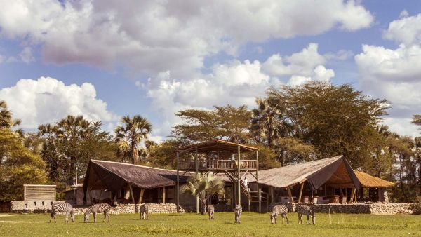 Chem Chem Safaris