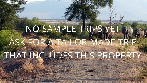 Placeholder - Tailor-Made Safaris